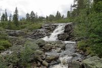 Norway, Buskerud County, Blefjell area, rapids