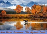 "New Theme Tomorrow: ""The Majestic Earth"" (forests, waterfalls, mountains, valleys, rivers, glaciers, etc)"