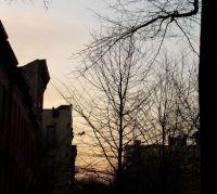 Sunset in Brooklyn