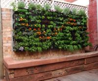 GARDEN IDEAS..BUILD A WALL UNIT OF BOX PLANTERS...