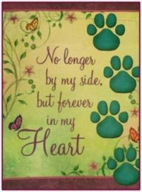 For Pets Who Have Left Us