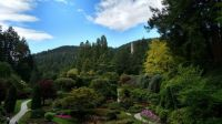 Bouchard Gardens, June