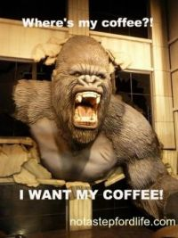 i-want-funny-coffee-memes