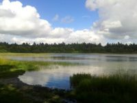Lake in Jutland