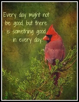 There is something good in every day....