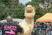 Chainsaw carving (2)