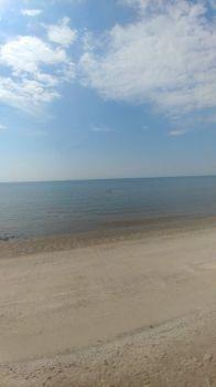 Morning Beach Milford CT