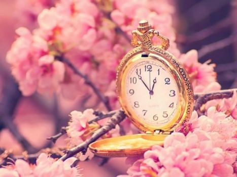 watch with flowery background