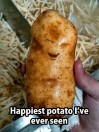 Happy spud