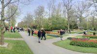 Keukenhof Gardens, Netherlands/ May 2/16