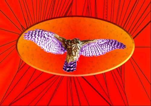 Stained Glass Bird 12