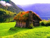 sod roofed house