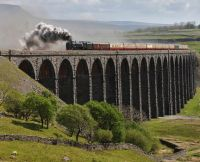 Duke of Gloucester on Ribblehead Viaduct.