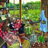 O58876-Allotment-Cats-w