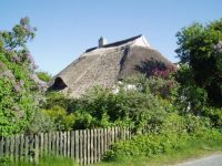 Thatched cottage, Hiddensee