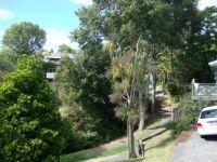 DSC00827 Walkway in Browns Bay, Auckland, NZ
