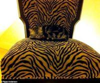 Pets Hiding in Plain Sight #1
