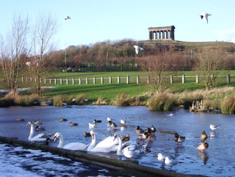 Herrington Country Park & Penshaw Monument