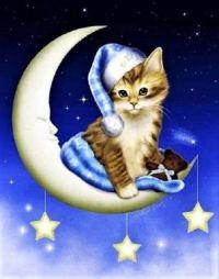 """Cat Art"" -  Melissa Dawn Art"