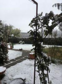 Snow ! Bologna, 26/03/2020