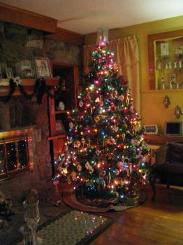 Christmas tree in my living room