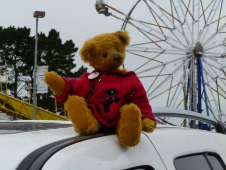 Teddy Bear Albert at the Humboldt County Fair