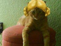 Lady Bichy