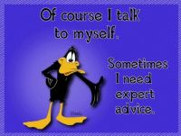 Of course I talk to myself!