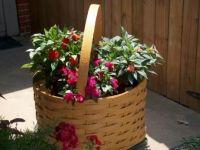 The Joy of Gardening!