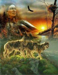 Native American Art by Malika Louve Amerindienne