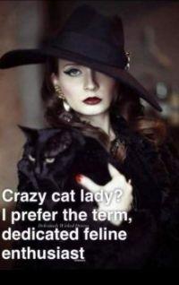Crazy  cat Lady. NO