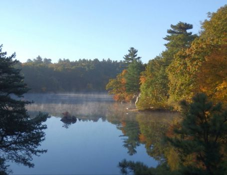 Mist on the pond in autumn