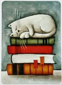 CAT NAP ON THE BOOKS...