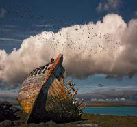 Iceland - Shipwreck