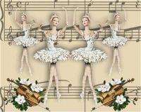 balerines