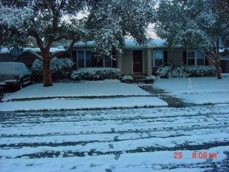 The South Texas Christmas Miracle, 2004
