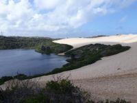 GC7D86E  The Cronulla Sand Dunes S 34° 02.024 E 151° 10.218