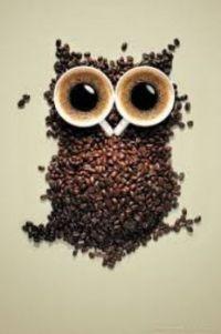 coffee hoot