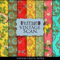 Vintage Exotic Paper