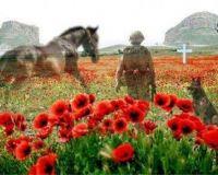 Veteran Warriors Remembrance