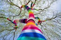 Coloured Tree
