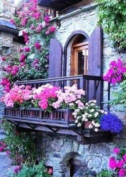 Potted Balcony