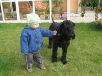 Malý psovod :-)