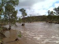 Todd River - Alice Springs