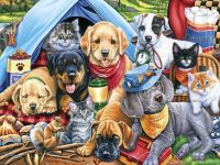 Camping Buddies by Jenny Newland