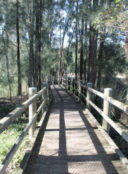 Warriewood wetlands boardwalk