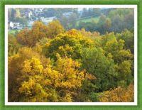 Barvy podzimu... Colors of Autumn...