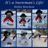It's a Snowman's Life!