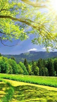 Krajina_Country