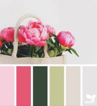 PeonyPalette2_150
